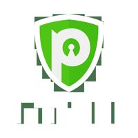 PureVPN Best VPN to Get US Netlfix in UK